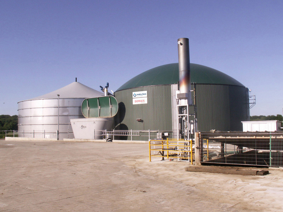 France launches tenders for wood and biogas-fired plants