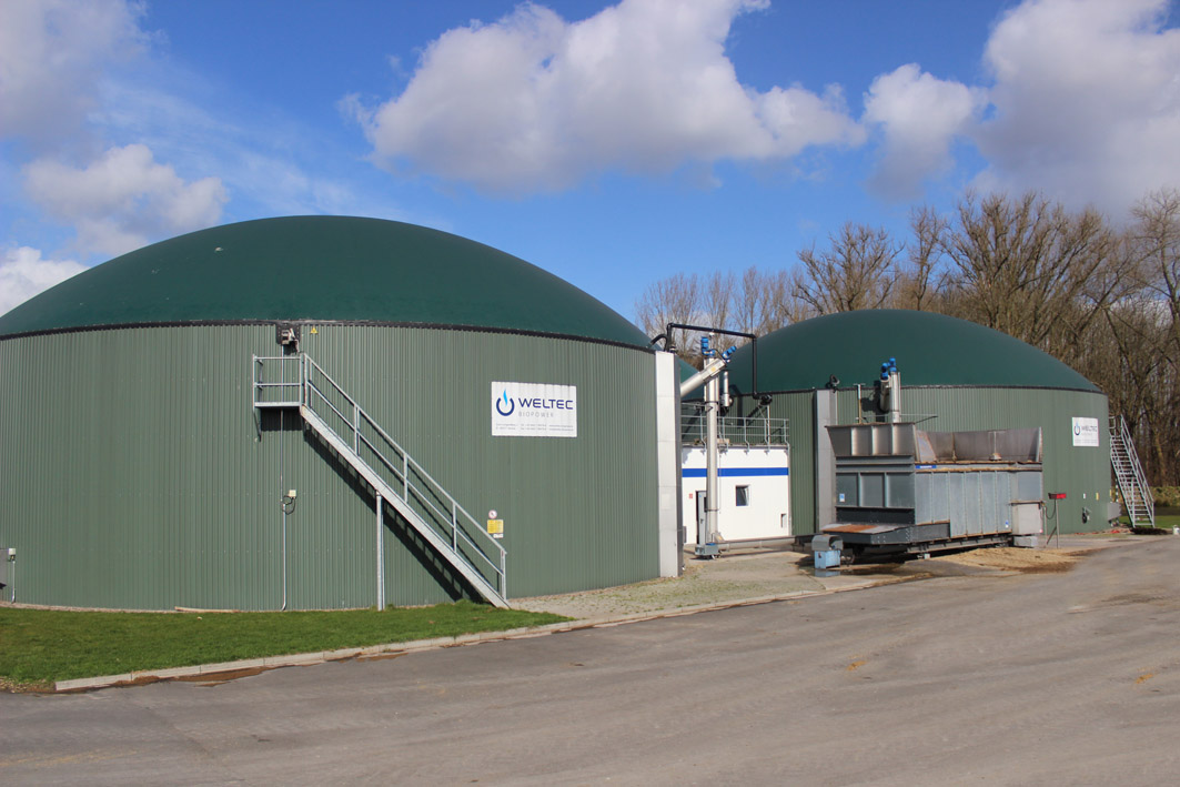 Weltec Biopower Builds 500 kW Biogas Plant for Vegetable Producer