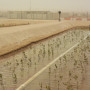 An integrated bioenergy and aquaculture system in the desert of Abu Dhabi