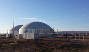 WELTEC Plant in Uruguay