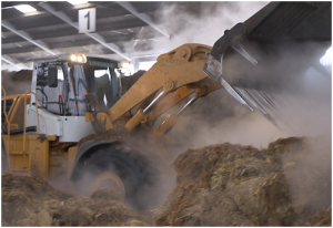 Preparation of mushroom compost at the composting plant (Monaghan)