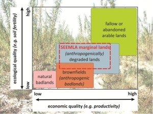 Figure 1: SEEMLA definition of marginal lands