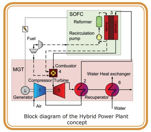 Biogas-fired combined heat and power plant