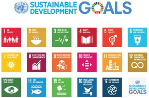 Sustainability Development Goals (SDG). Source: United Nations