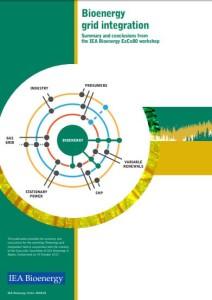 bioenergy-grid