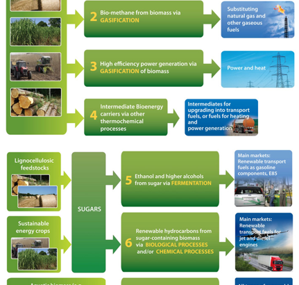 Bioenergy and Biofuels: Innovation and Technology Progress