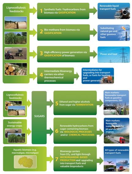 Bioenergy and Biofuels: Innovation and Technology Progress