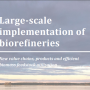Large-Scale Biorefineries in Sweden: a Multidisciplinary Study