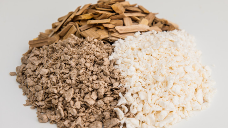 WoodZymes Project: Extremozymes For Wood-based Building Bioproducts