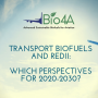 Workshop on Transport Biofuels and REDII: which perspectives for 2020-2030?
