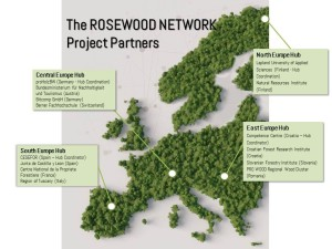 Rosewood network.