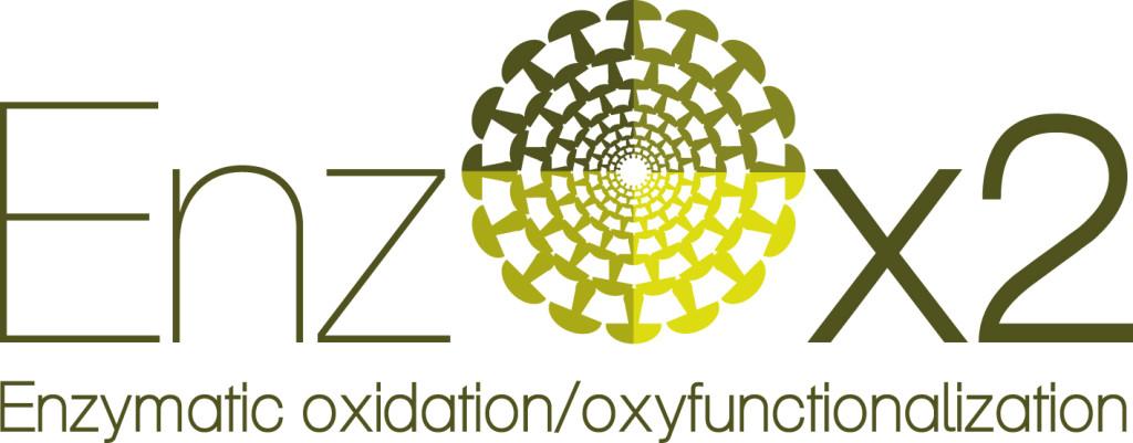logo_enzox2_l