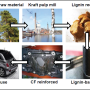 Lignin-based carbon fibre for lighter cars – GreenLight Project