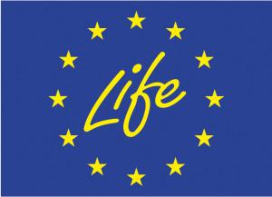 kaumera-life-logo