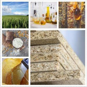 SUSBIND approach from left to right: from feedstock selection, via chemical synthesis to bio-based binder application and its testing in wood-boards © Cargill & RTDS from Shutterstock