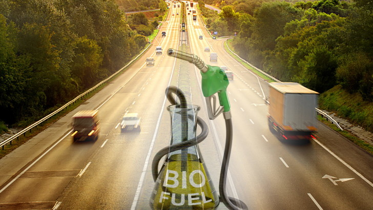 Biofuels from bio waste residues – The WASTE2ROAD Project