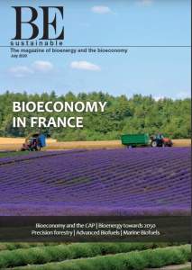 cover-BE-Sustainable-issue-11-july-2020